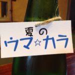 辰泉の日本酒、それのお供に一品を!